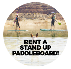 Rent a Stand Up Paddleboard!
