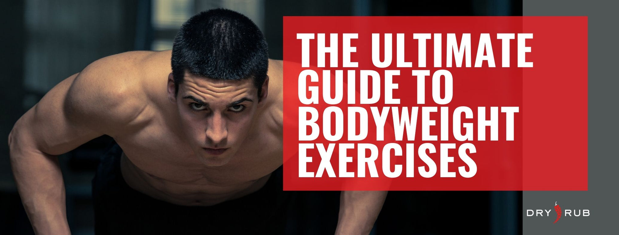 Your Ultimate Guide to Bodyweight Exercises