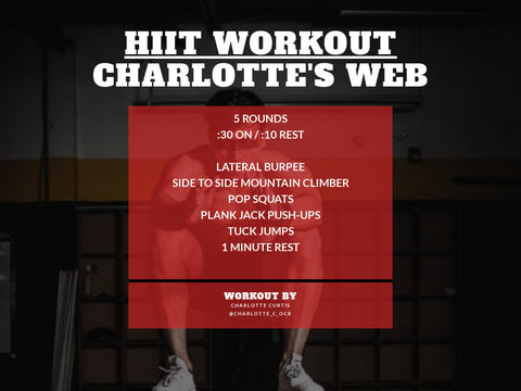 home workout - charlotte's web