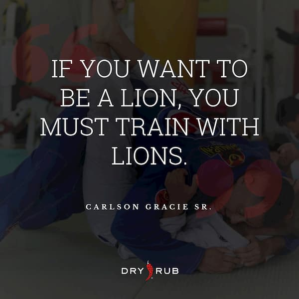 fitness quote - lion