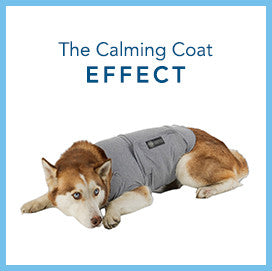 The Calming Coat effect