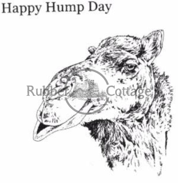 Camel Hump Day Rubber Stamp