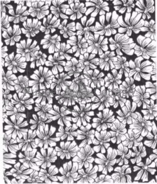 Daisy Flower Background Rubber Stamp