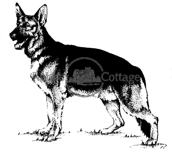 German Shepard Rubber Stamp