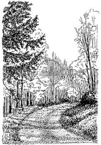 Path In The Woods Rubber Stamp