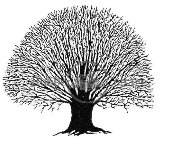 Tree Tiny 2 Rubber Stamp