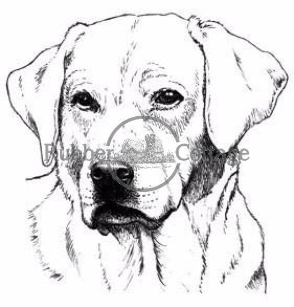 Yellow Labrador Small Rubber Stamp