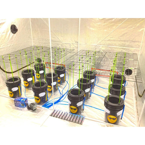 GROJI® Bubble Bucket DWC Hydroponic Systems