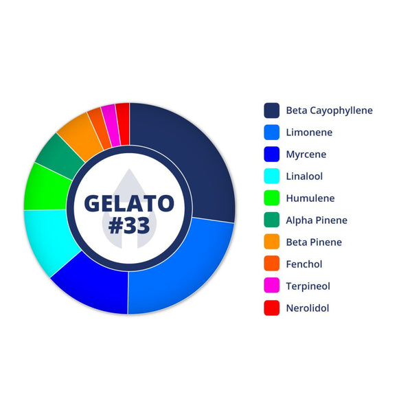 True Terpenes Gelato #33 Profile Infused, 15 ml