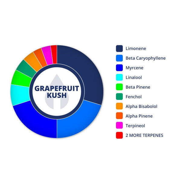 True Terpenes Grapefruit Kush Profile Infused, 2 ml