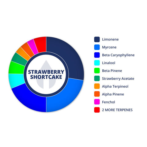 True Terpenes Strawberry Shortcake Profile Infused, 15 ml