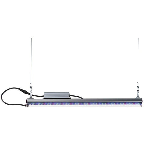 Kind LED® X80 Series Veg Bar Light, 4'