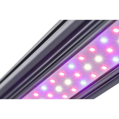 Kind LED® X40 Series Flower Bar Light, 2'