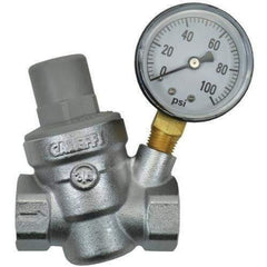 "Dosatron Pressure Regulator with Gauge - 3/4"" (FPT x FPT) 