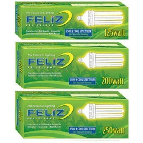 Feliz Blue Fluorescent 125 Watt, 6500K
