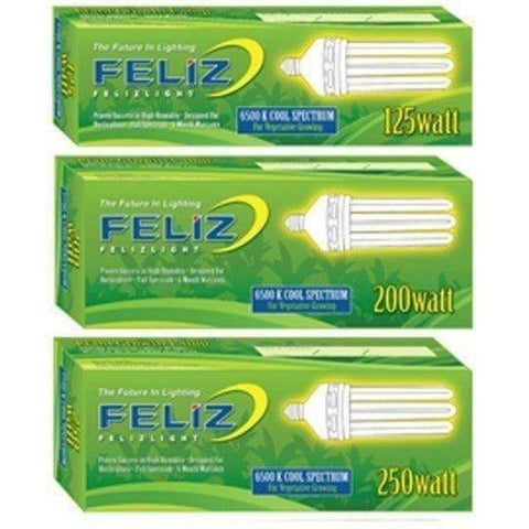 Feliz Blue Fluorescent 250 Watt, 6500K