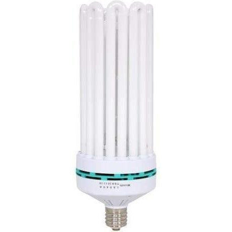 Feliz Blue Fluorescent 300 Watt 6500K | Cfl Bulbs