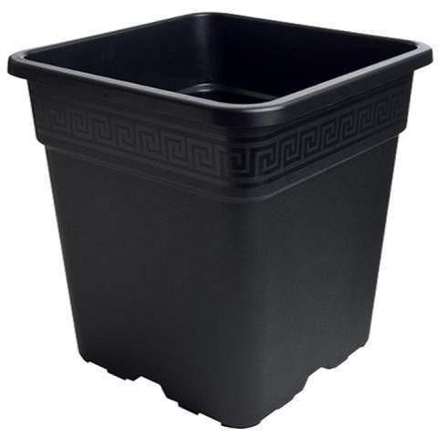 Gro Pro® Black Square Pot 1.5 Gal Containers | Shape