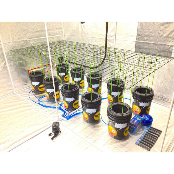 GROJI® SCROG 10 Plant DWC Hydroponics System | Deep Water Culture Bubbler Grow Buckets