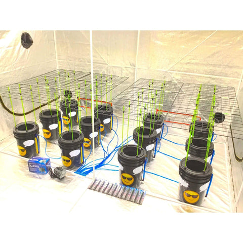GROJI® SCROG 12 Plant DWC Hydroponics System | Deep Water Culture Bubbler Grow Buckets