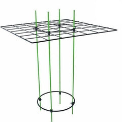 "Grow1 Hydroponics SCROG Kit, 19"" x 25"""