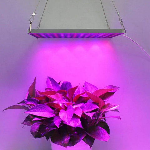 LED Grow Light 45W Full Spectrum Plant Starter Panel