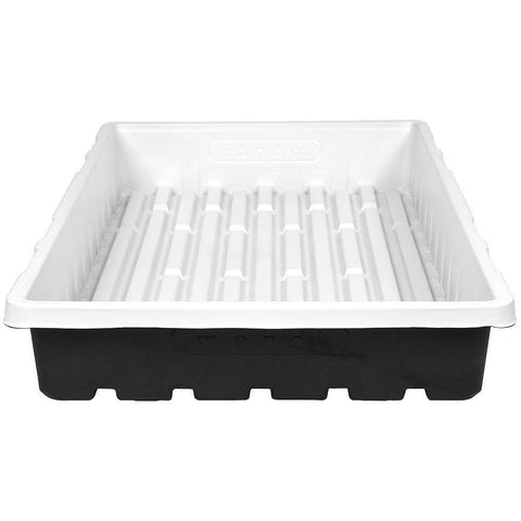 Mondi™ Clean and Strong Premium Propagation Tray