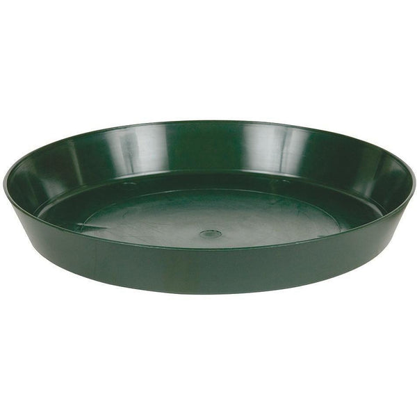 Premium Green Saucer 10 Containers | Saucers