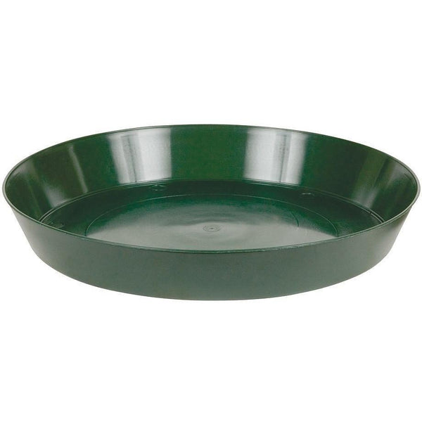 Premium Green Saucer 12 Containers | Saucers