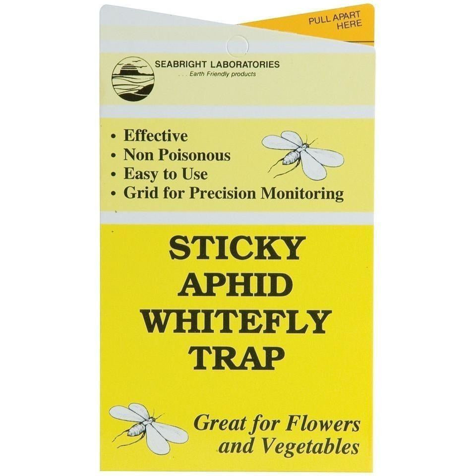Seabright Sticky Aphid/Whitefly Traps | Pack of 30
