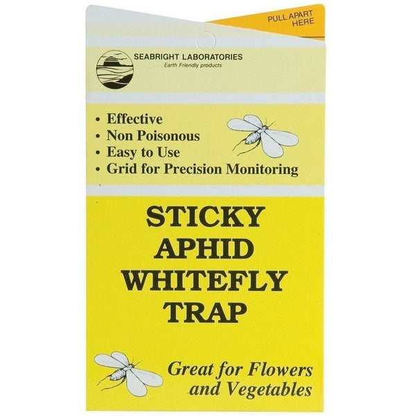 Seabright Sticky Aphid/whitefly Traps Packs Of 3 | Case 24 Plant Pests Insect Control