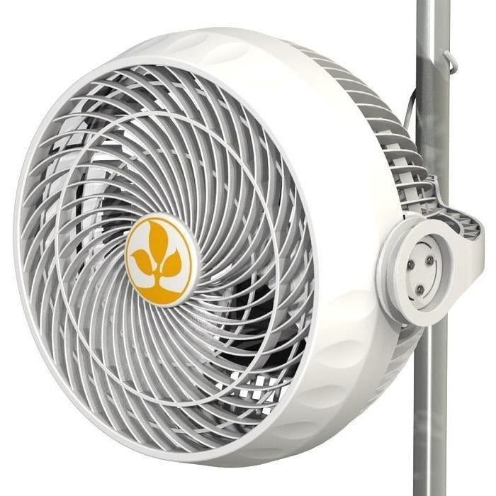 Secret Jardin Cyclone Monkey Fan, 30w