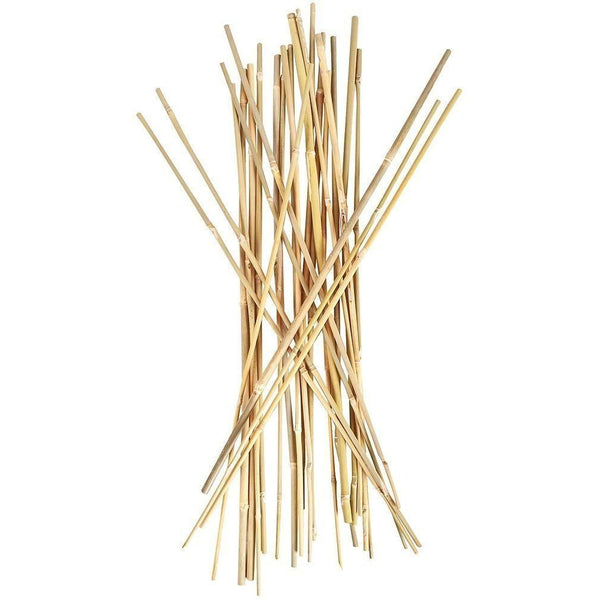 Smart Support® Bamboo Stakes 2 | Pack Of 25 Plant Support