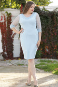 Women's Plus Size Pearl Embroidered Blue Dress
