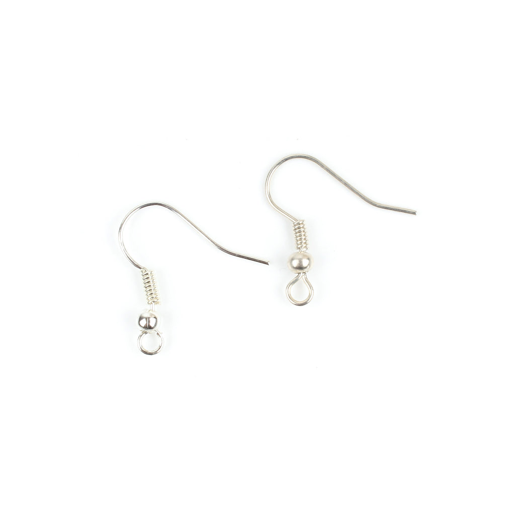 1 Pair Silver Fish Hook Earrings