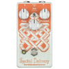 EarthQuaker Spatial Delivery Sample & Hold/Envelope Filter | Palen Music