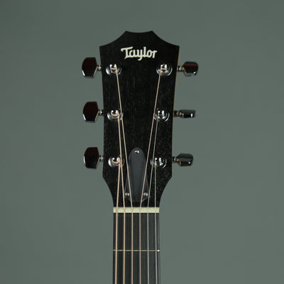 Taylor 214ce DLX - Layered Rosewood Back and Sides