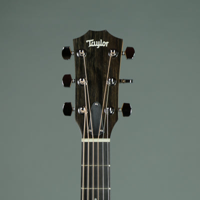 Taylor 110ce - Layered Walnut Back and Sides