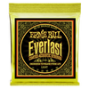 Ernie Ball Everlast 80/20 Bronze Light | Palen Music