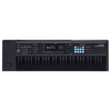 Roland JUNODS61B 61-Key Synthesizer Special Edition Black w/ FREE Supplies from Palen Music!