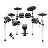 Alesis DM10 MKII Pro 10-Piece Electronic Drum Set | Palen Music
