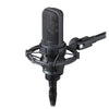 Audio Technica AT4050 Multi-Pattern Condenser Microphone | Palen Music