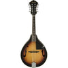 Fender Concert Tone Mandolin Pack - pmc.palenmusic - 1