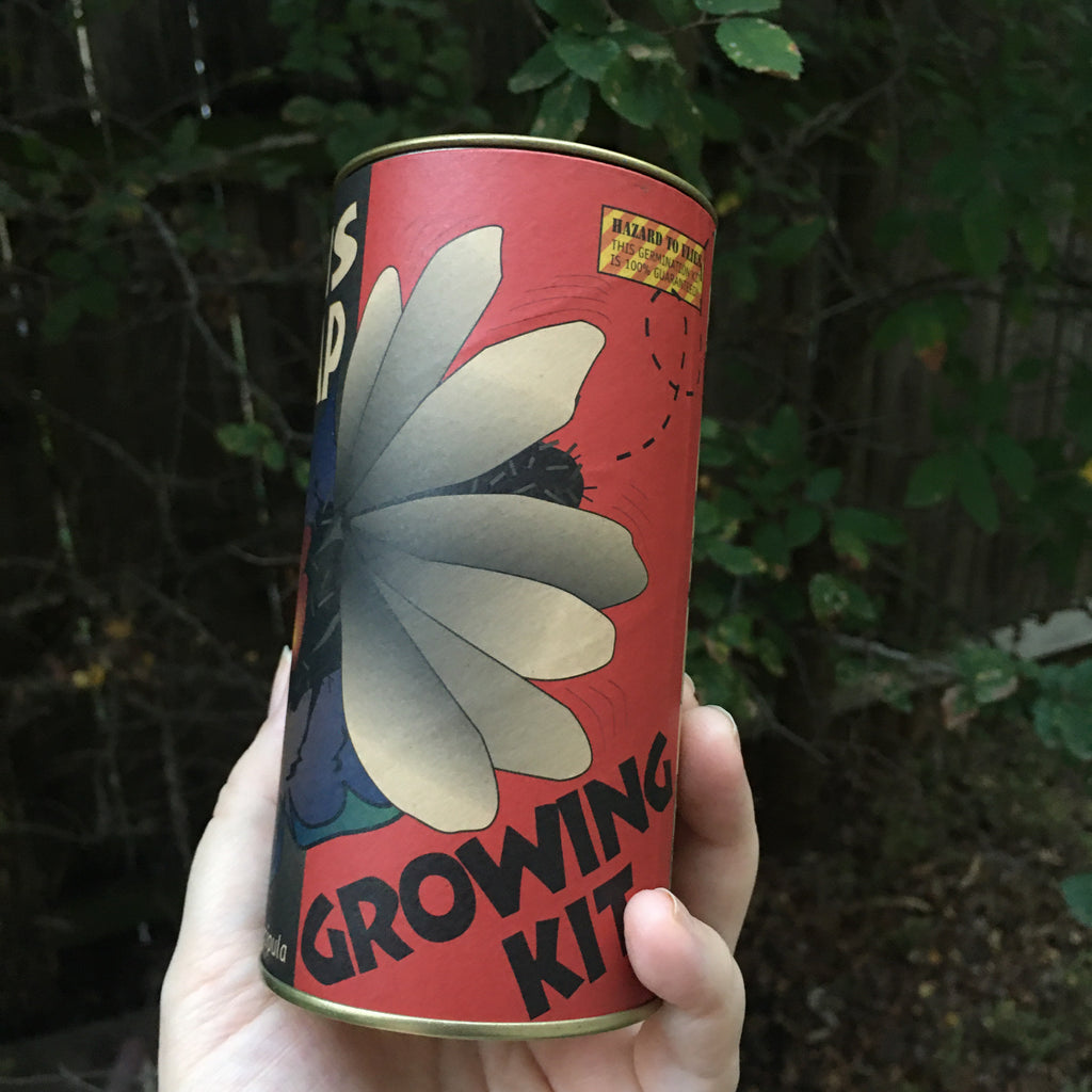 Venus Flytrap | Seed Grow Kit