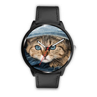 Kitten Watch - Nvr2Lte2Shop.com