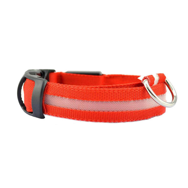 Night Safety LED Dog Collar PROMO - Nvr2Lte2Shop.com