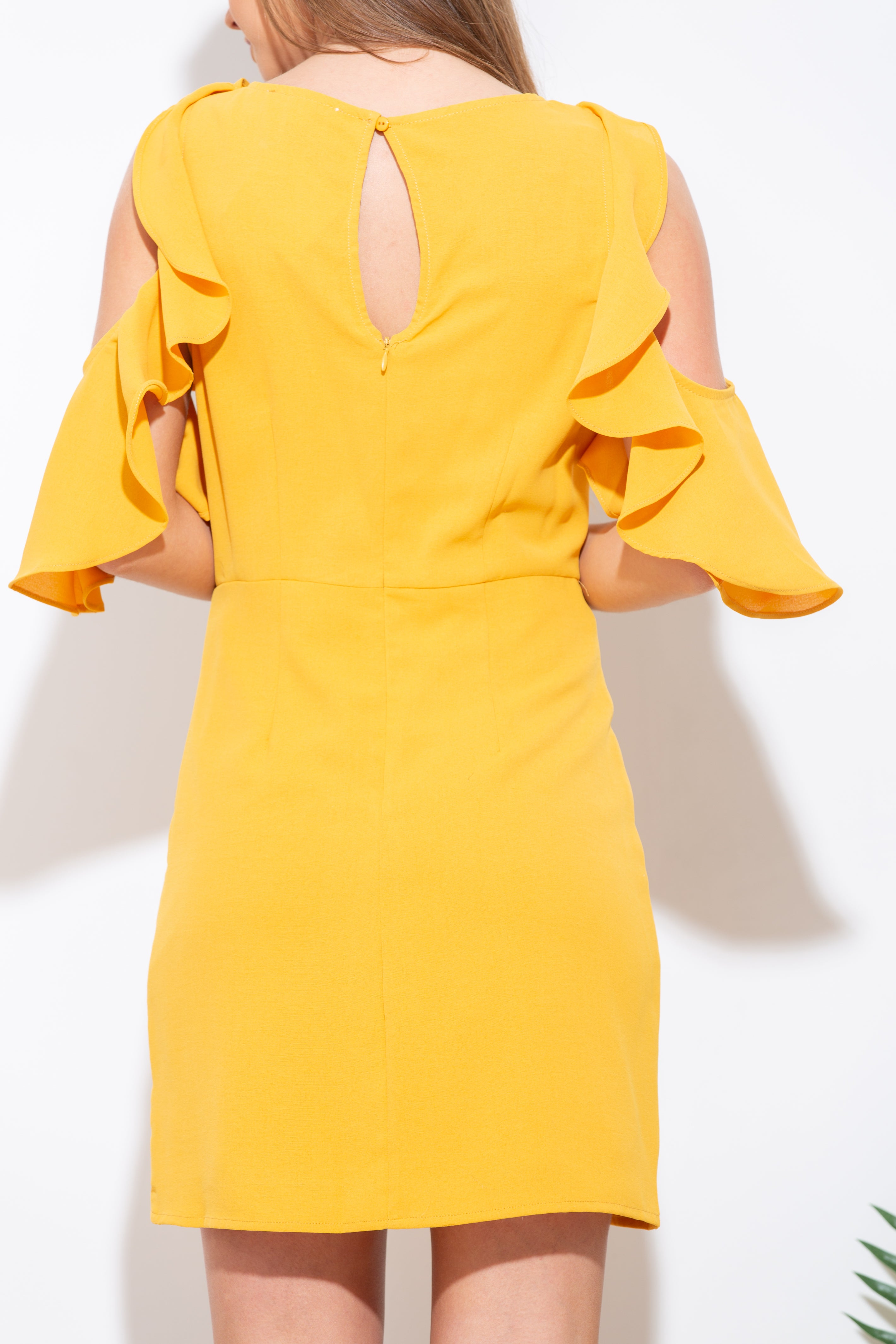 The Golden Rule Ruffle Dress