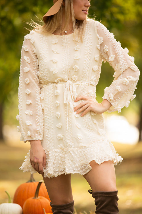 Steal Your Heart Ivory Pom Dress