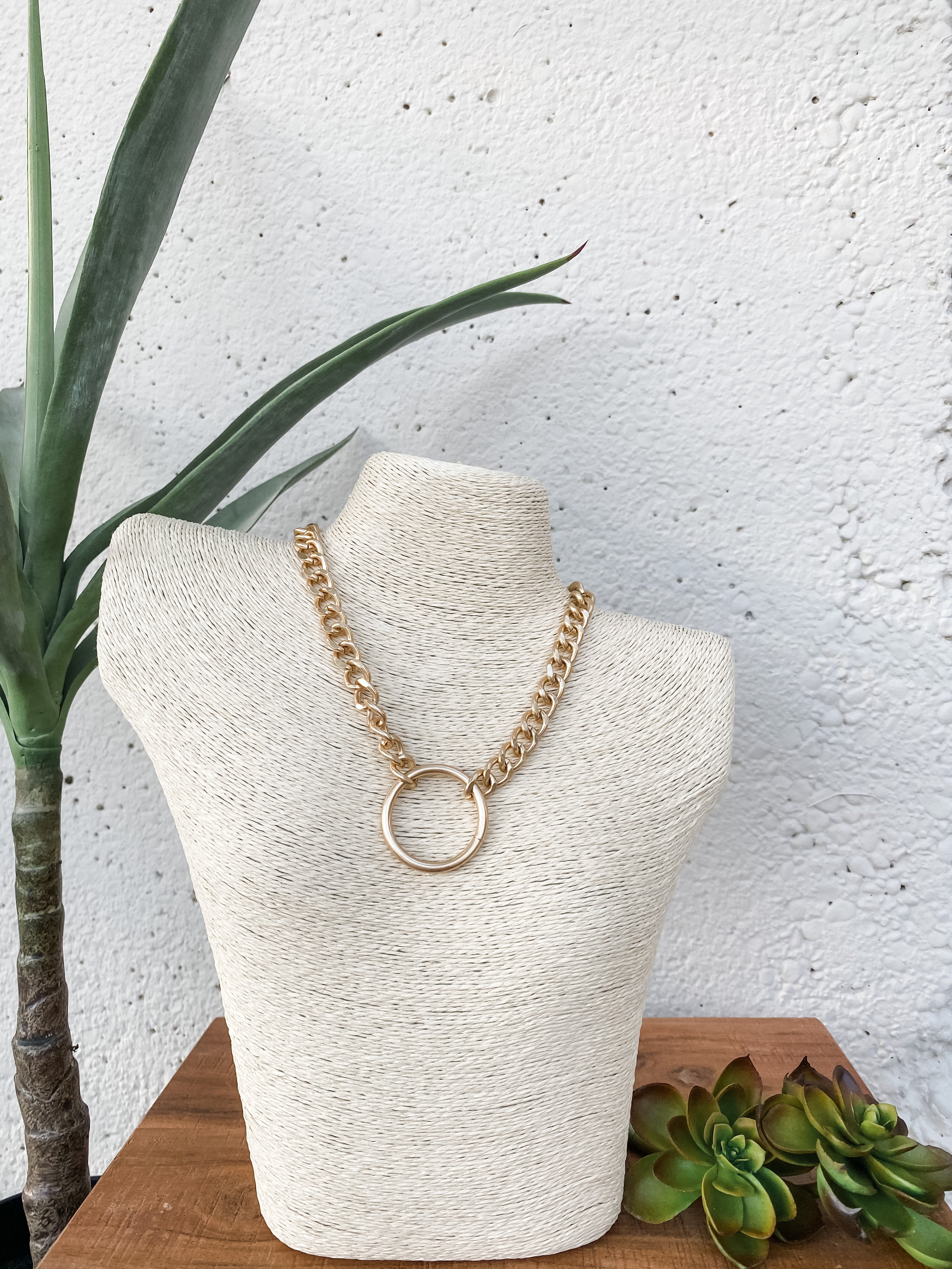 Chain Necklace Circle Pendant