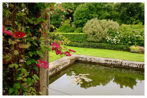 Fishpond Kilfane Glen and gardens thomastown co. kilkenny ireland